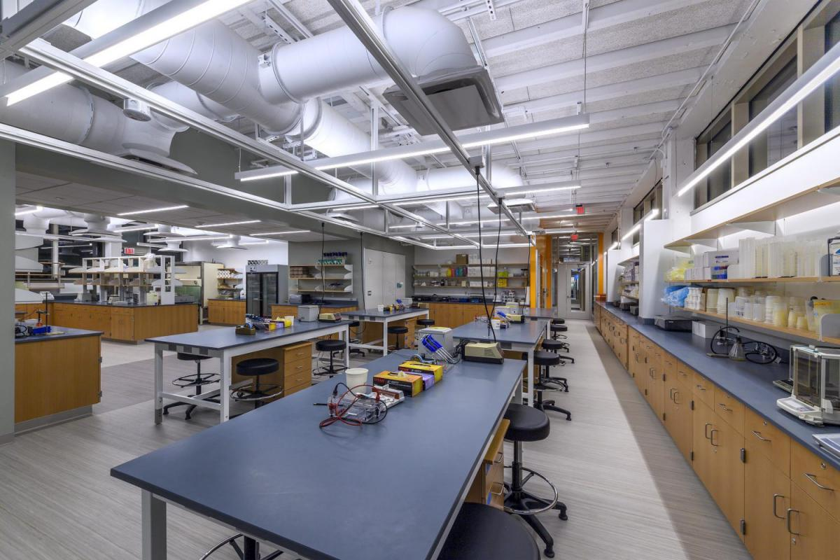 A lab inside of Anderson Biological Lab with lab tables and cabinets.