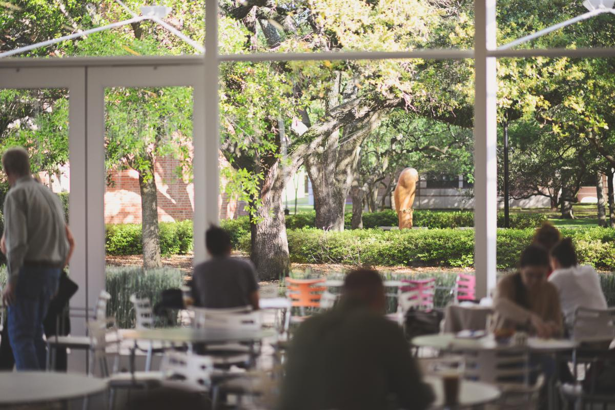 Picture taken inside of Brochstein Pavilion's glass window, looking out onto the garden with the large owl statue in the center.