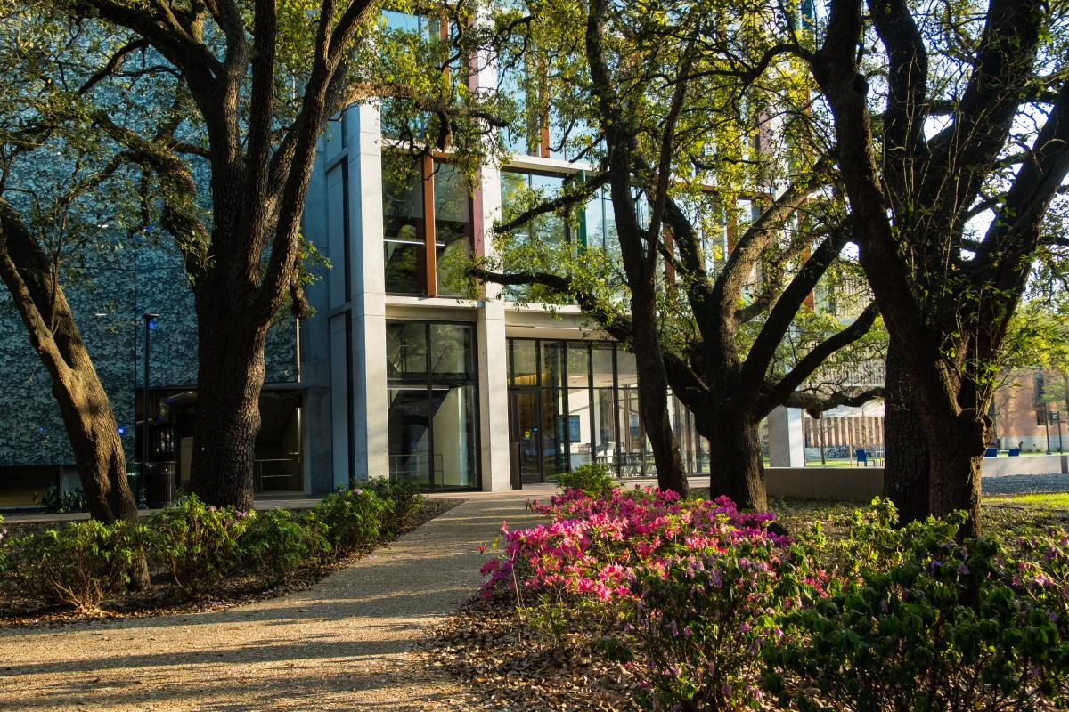 Photo shows tree-lined sidewalk leading to the front of the Cambridge Office Building.