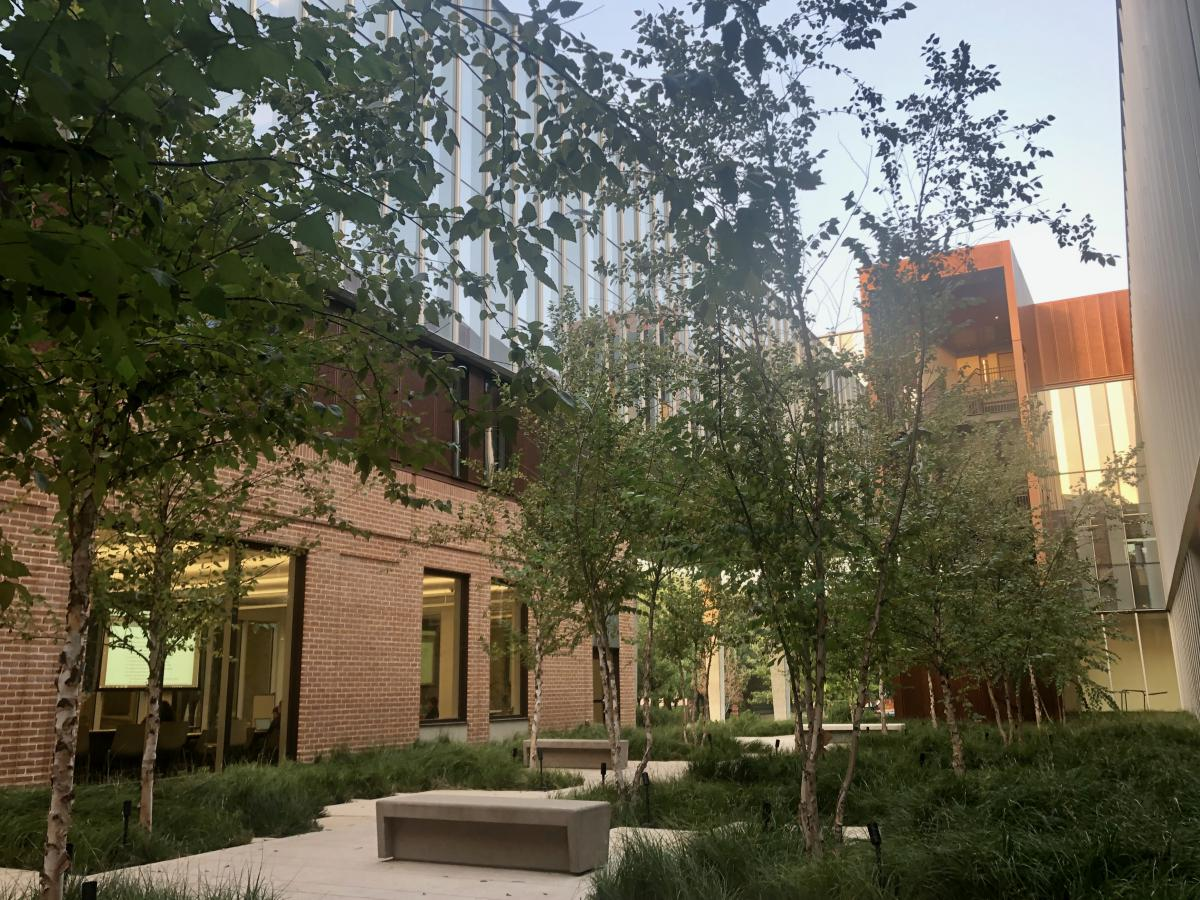 Lush courtyard filled with trees in Kraft Hall.