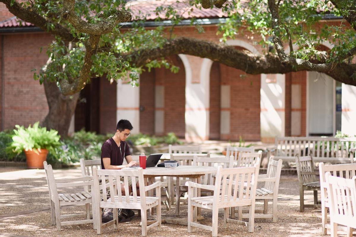 Picture of a student sitting at a round table in Ray's Courtyard under the shade of a large tree.